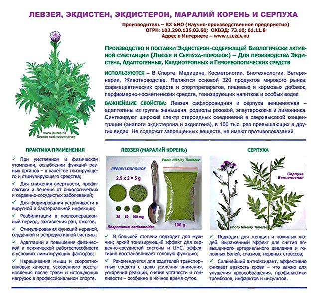 Производство иммуно-стимулирующей субстанции из листьевой левзеи сафлоровидной