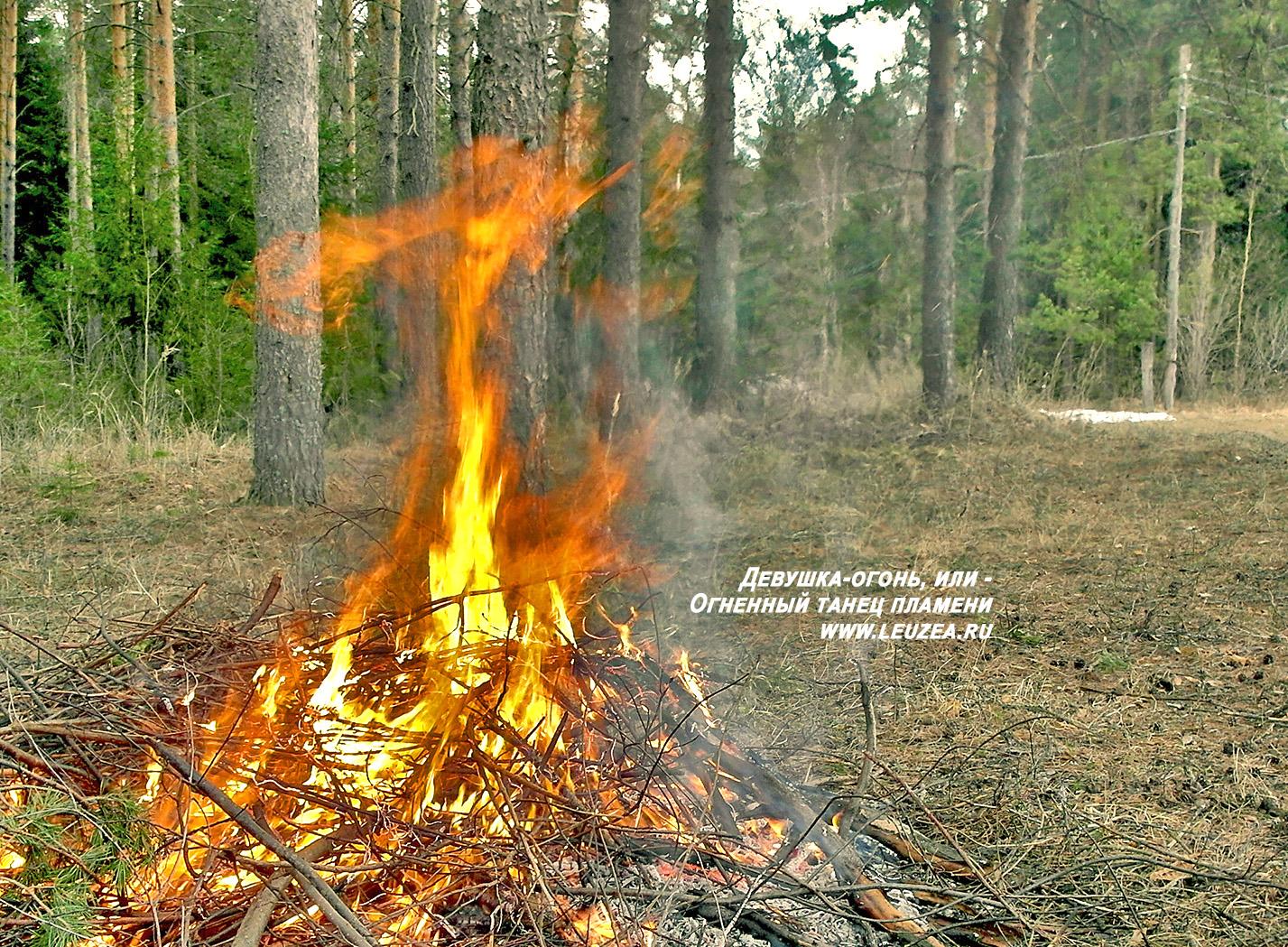 Девушка-огонь на лесной поляне