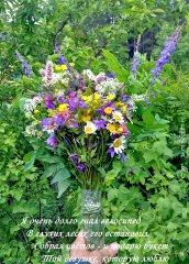 Букет лесной - июньский