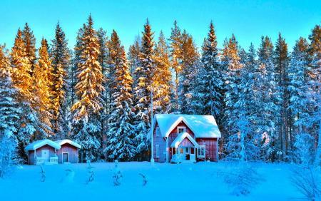 Природа-зимой.jpg