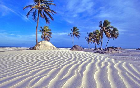 Природа-песок-1.jpg