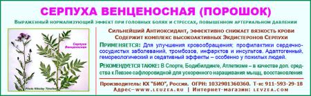 Серпуха-бад-4.png