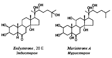 ecdysterone.png